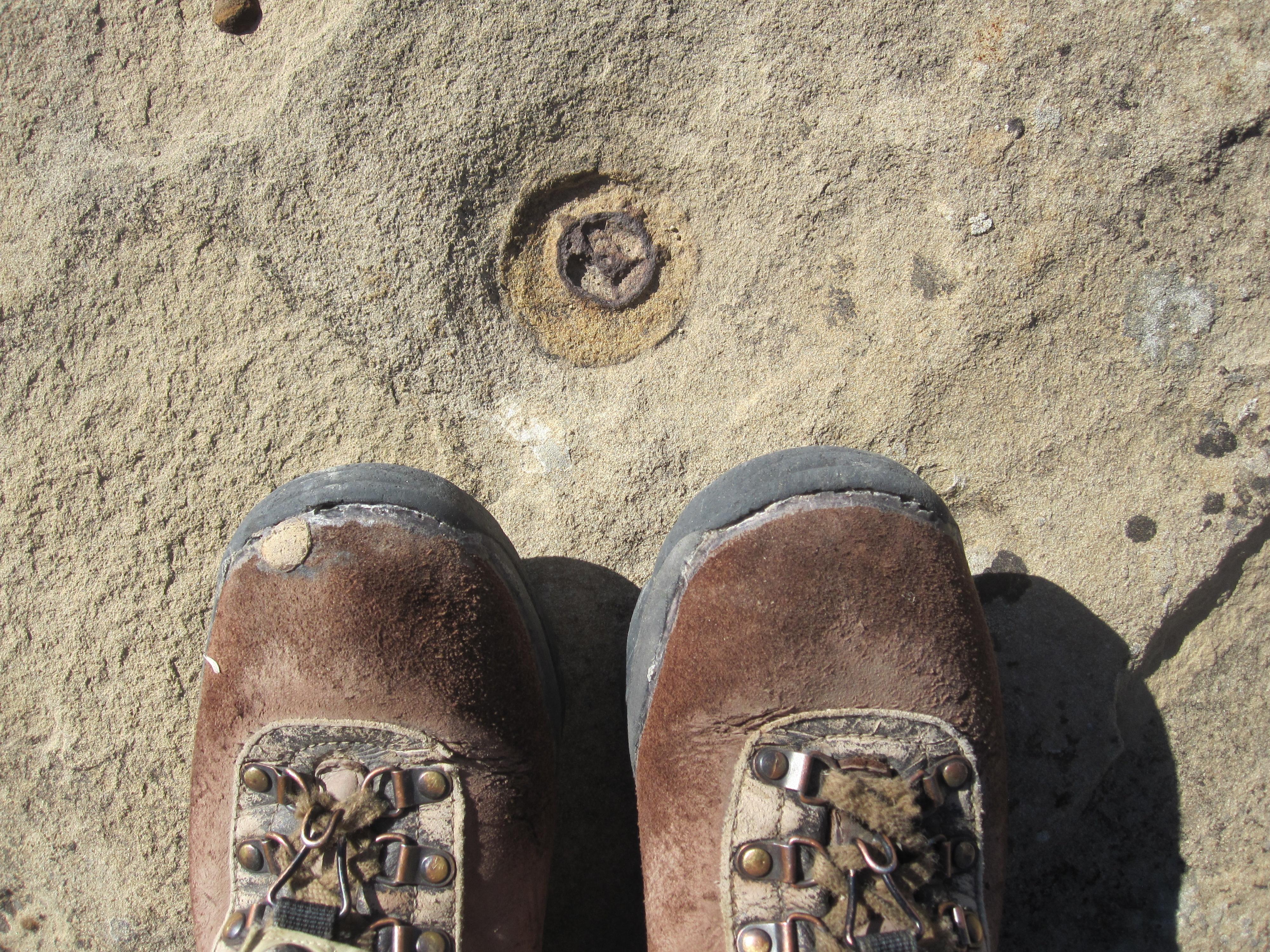 Boots SnLuis wheel