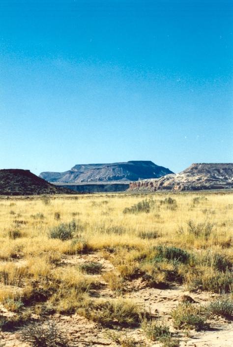 In the Ojito Wilderness, New Mexico